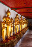 Standing Buddha statues. Thailand Royalty Free Stock Photography