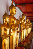Standing Buddha statues, Thailand Royalty Free Stock Images