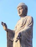 Standing buddha Stock Photos