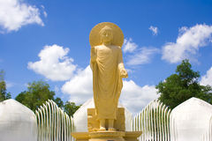 Standing Buddha. Royalty Free Stock Photography