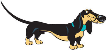 Standing cartoon dachshund Royalty Free Stock Images