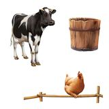 Standing cow, old wooden bucket, red chicken Royalty Free Stock Image