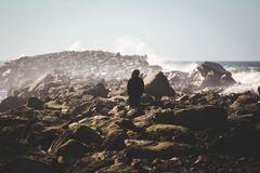Standing in the crashing waves Royalty Free Stock Images