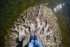 Standing on dead tree roots Royalty Free Stock Photography