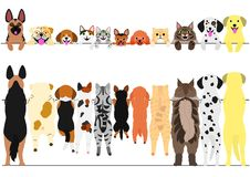 Standing dogs and cats front and back border set. Standing large and small dogs and cats front and back border set Stock Photos