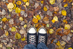 Standing in dry autumn leaves Royalty Free Stock Photography
