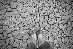 Standing on dry soil Stock Photography