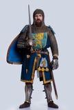 standing för full riddare för armor medeltida Arkivbild