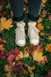 Standing on fallen leaves Royalty Free Stock Image