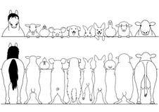 Standing farm animals front and back border set. Standing farm animals in a row front and back border set stock illustration
