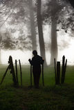 Standing at a fence in a misty forest Royalty Free Stock Image
