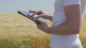 Standing at a field surfing on a tablet stock video