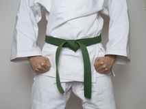 Standing fighter green belt centered martial arts Royalty Free Stock Photos