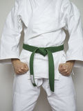 Standing fighter green belt martial arts white suit Royalty Free Stock Photography