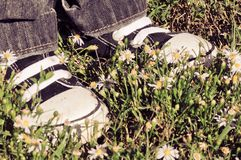 Standing on Flowers Royalty Free Stock Photography