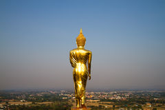 Standing golden buddha Royalty Free Stock Photos
