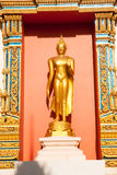 Standing golden Buddha Royalty Free Stock Photo