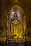 Standing Golden Buddha Statue. Giant golden statue of standing Buddha in ancient temple with altar at the foot stock image