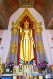 Standing golden buddha statue at entrance of Grand pagoda  in Na Royalty Free Stock Photos