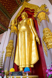 Standing golden buddha statue at entrance of Grand pagoda  in Na Royalty Free Stock Photo