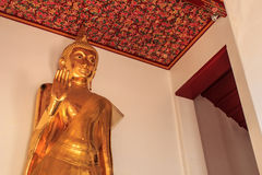 Standing golden buddha statue Stock Images