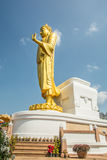 Standing golden buddha Stock Photography