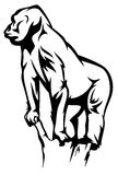 Standing gorilla vector Royalty Free Stock Images
