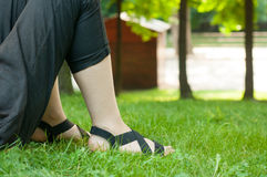 Standing on the grass Stock Photography