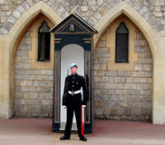 Standing guard royalty free stock photography
