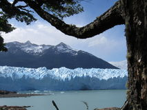 Patagonia Glaciar in Summer Stock Image