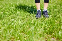 Standing on lawn Royalty Free Stock Images