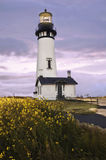 Standing lighthouse with glowing light and yellow flowers in foreground Stock Photography