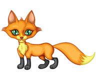 Standing a little fox Royalty Free Stock Photo