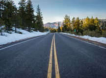 Standing in the MIddle of Snowy Mountain Road Stock Image