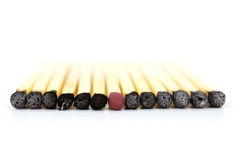 Standing out from the crowd. A match standing out from the crowd isolated on white background Stock Images