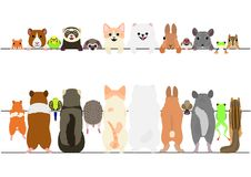 Free Standing Pet Animals Front And Back Border Set Royalty Free Stock Photos - 107932278