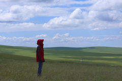 Standing in prairies Stock Photo