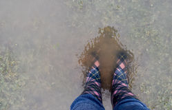 Standing in a puddle Stock Images