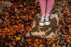Standing on rock surrounded by autumn leaves Royalty Free Stock Images