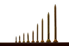 Standing screws Royalty Free Stock Photos