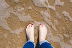 Standing at the shoreline Royalty Free Stock Photo