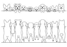 Standing small dogs front and back line art border set. Standing cute small dogs front and back line art border set stock illustration
