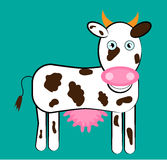 Standing, smiling cow on blue background. Huge cow with brown pattern, blue backdrop Royalty Free Stock Image