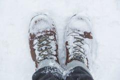 Standing in snow Stock Photos