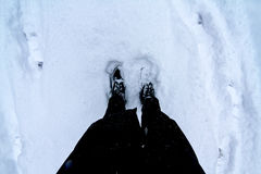 Standing in the snow Royalty Free Stock Photo