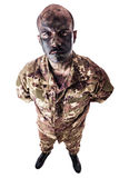 Standing soldier Royalty Free Stock Photo