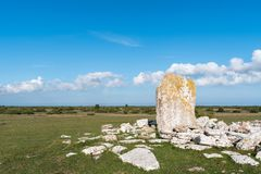 Standing stone in an ancient grave field Stock Photos