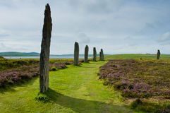 Standing stone circle Stock Images