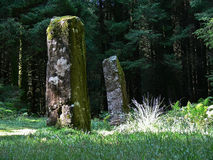 Standing stones Royalty Free Stock Images