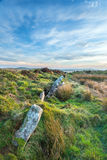 Standing Stones on Bodmin Moor Stock Images